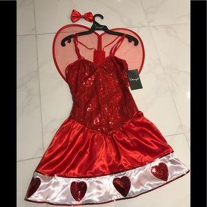 Brand new, never worn Dreamgirl Heart costume!
